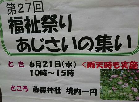 172627ajisai (4)