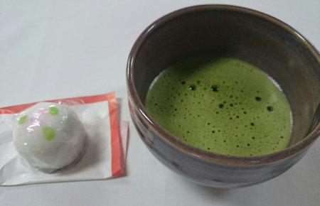 172627ajisai (6)